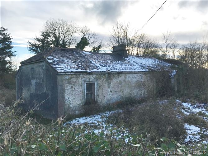 Caherguillamore, Grange, Co. Limerick