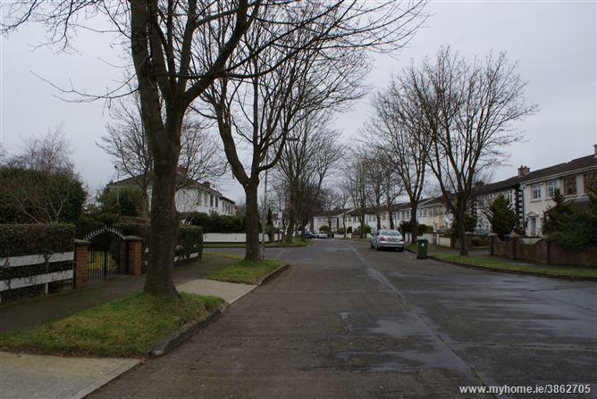 Palmerstown Woods, Clondalkin, Dublin 22