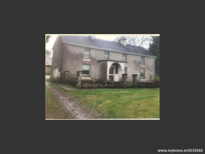 78 Acre Residential Farm, Castlerea, Roscommon