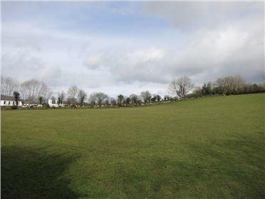Photo of Ballinalour, St. Mullins, Carlow
