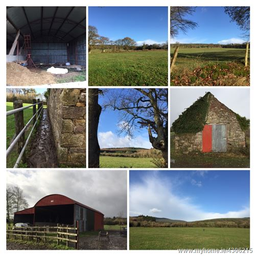 {Final Offers 15/8/19 }C48 acres Poulaculleare, Cahir, Tipperary