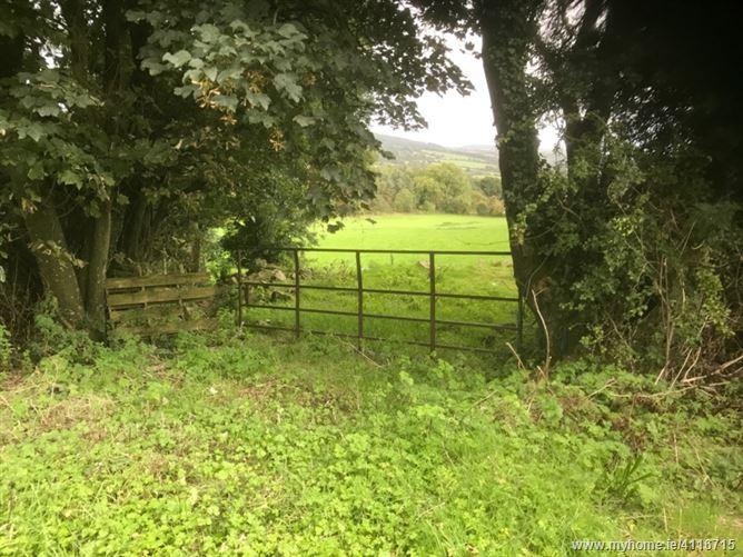 Kilvinogue, Thomastown, Kilkenny