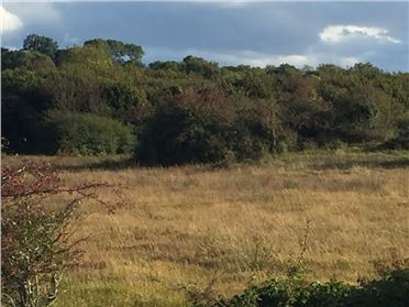 Main image of Approximately 15.15 hectares (37.424 acres) Cregard, Barefield, Ennis, Clare