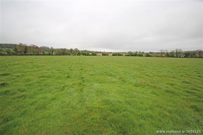Collierstown, Bellewstown, Meath