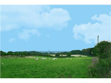 Photo of Agricultural land at Tooman Road, Kilpedder, Co Wicklow