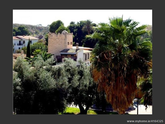 Calle, 03016, Alicante / Alacant, Spain