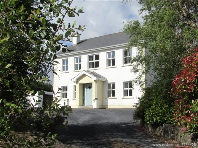 Main image for Sawnagh, Portumna, Co. Galway, H53 CR60