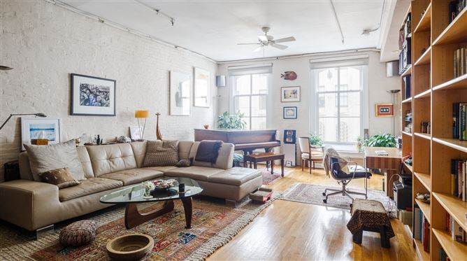 Main image for Edith the Cat,New York,New York,USA