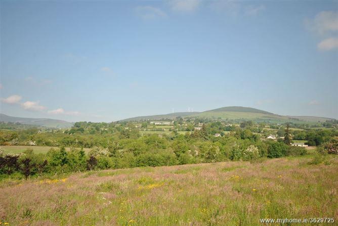 Ballypreacus, Bunclody, Wexford
