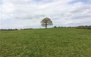 72 ACRES - COOLNACARTE, Clones, Monaghan