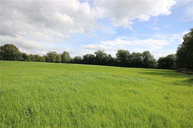 Main image for c.6.5 Acres, Ballysax, , Kilcullen, Kildare