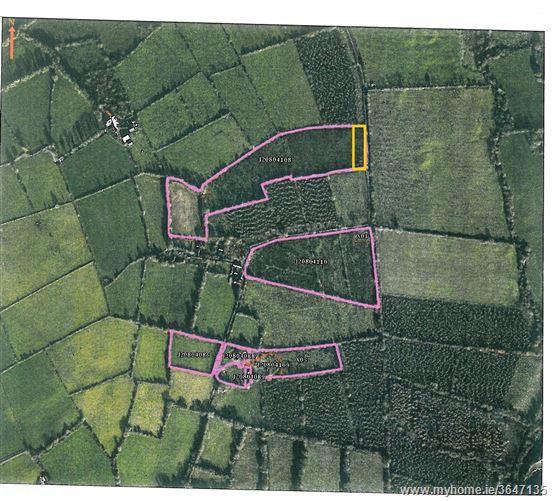 Coolcuttia, c.0.75 acres, Paulstown, Kilkenny