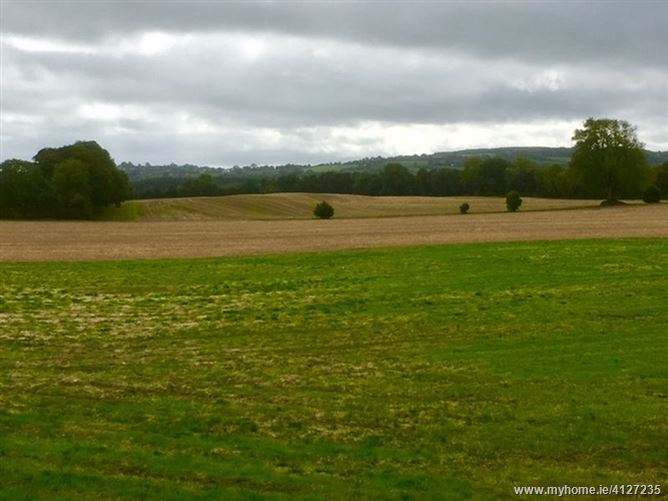 Photo of 95.480 Acres, Ballaghmore, Borris-in-Ossory, Laois
