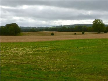 Main image of 95.480 Acres, Ballaghmore, Borris-in-Ossory, Laois