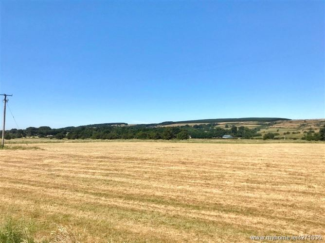 Main image for Land c. 30.4 Acres/ 12.3 HA., In One or Two Lots, Lisheen Road, Brittas, Dublin