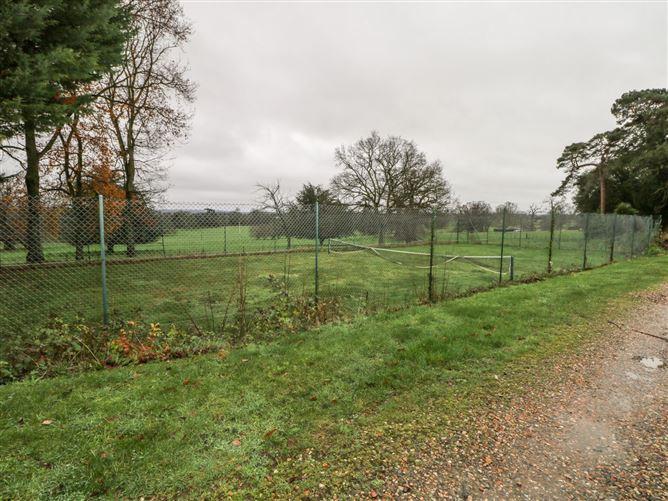 Main image for Elm,Faversham, Kent, United Kingdom