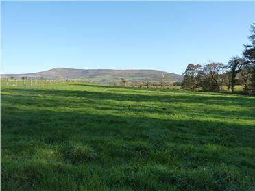 Main image of Ballinree, Garryhill, Carlow