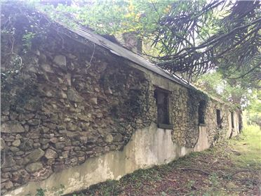 Photo of Ann Mount, Derelict Farm House on C. 32 Acres / 12.95 Ha; Glenasmole, Bohernabreena, Dublin 24