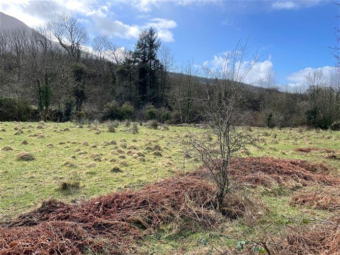 Main image for Ballynanoose,Killoscully,Newport,Co. Tipperary,V94 V40C