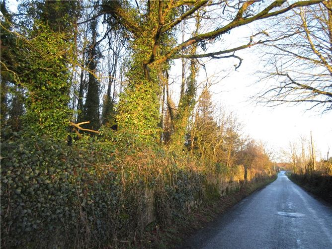 Main image for Site,Moate,Moylough,Ballinasloe,Co. Galway