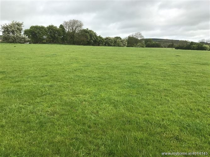 Land c. 37 Acres/ 14.97 Hectares, Crosscool Harbour, Blessington, Wicklow