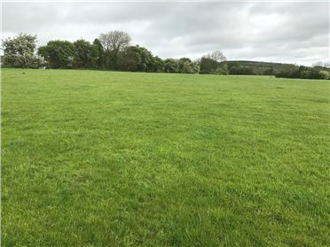 Main image of Land c. 37 Acres/ 14.97 Hectares, Crosscool Harbour, Blessington, Wicklow