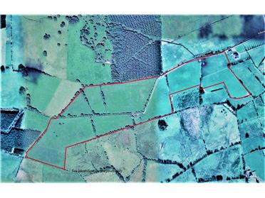 Image for Lands at Poppyhill, Loughrea, Galway