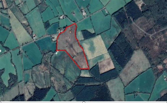 Main image for 8.42 Ha Ballyduff, Ballyduff, Ballaghmore, County Laois, Borris-in-Ossory, Co. Laois