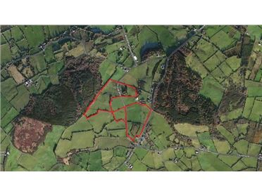 Photo of Approx. 43 Acres, Gortnacally, Timoney, Roscrea, Co Tipperary