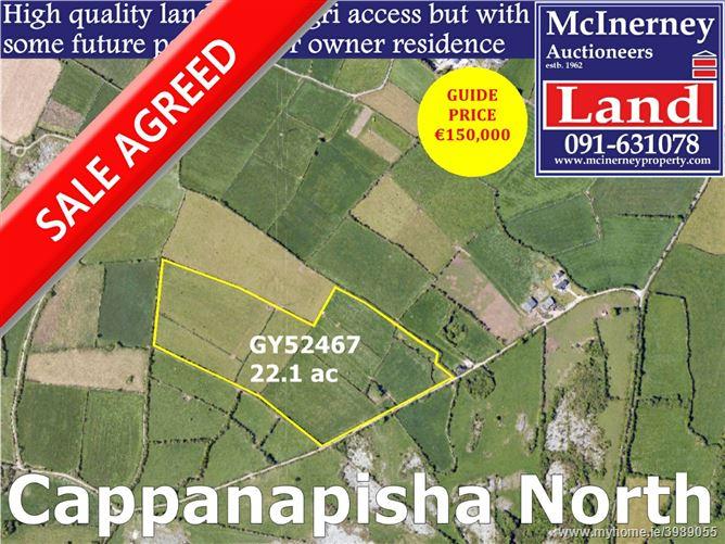 Cappanapisha North, Gort, Galway