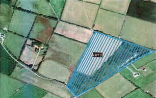 C. 28.5 Acres at Craanlusky, Bilboa, Carlow Town, Carlow