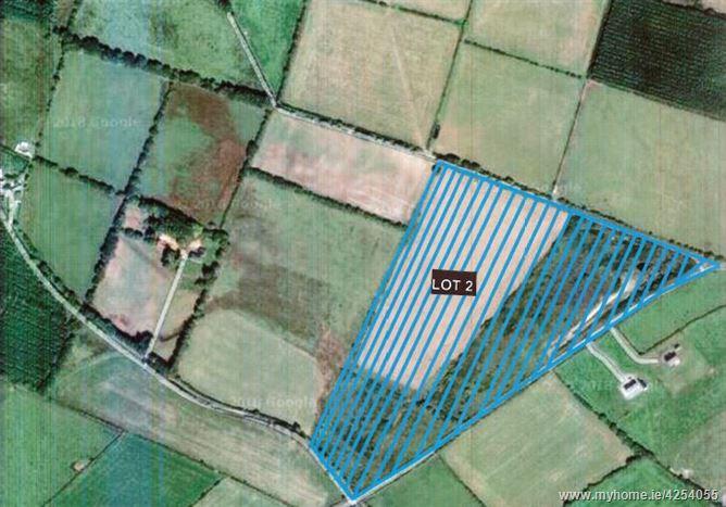 C. 28.5 Acres at Craanlusky, Bilboa, Carlow Town, Carlow