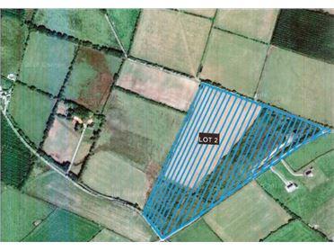 Photo of C. 28.5 Acres at Craanlusky, Bilboa, Carlow Town, Carlow