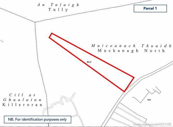 Lands comprised within Folio GY13438 at Ballinacor, Ballygar, Co. Galway