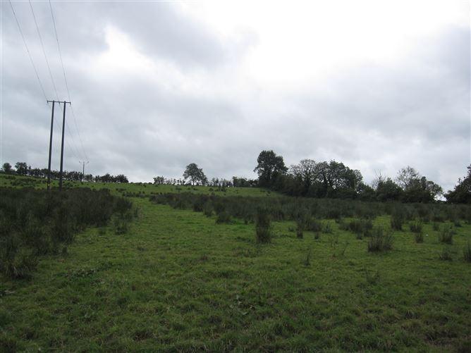Main image for Lisacullion, Castleblayney, Monaghan