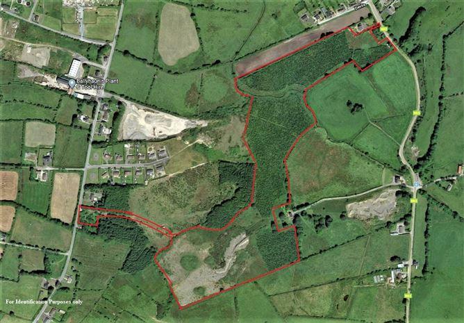 Main image for Lands at Devlis, Ballyhaunis, Mayo