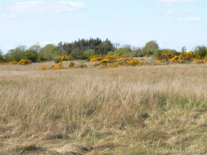Main image for Lenamore and Killimor, Attymon, Co. Galway