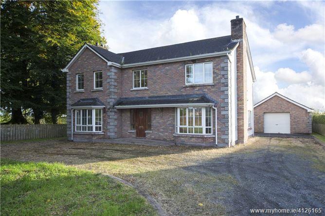 Photo of Site B, Daisyhill, Mullaghduff, Ballyconnell, Co. Cavan