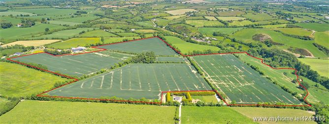c.92 Acres, Mellifont, Collon, Louth