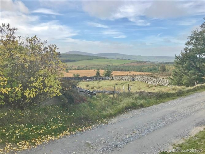 Land c. 1.8 Acres/ 0.72 Ha., Granabeg, Valleymount, Blessington, Wicklow