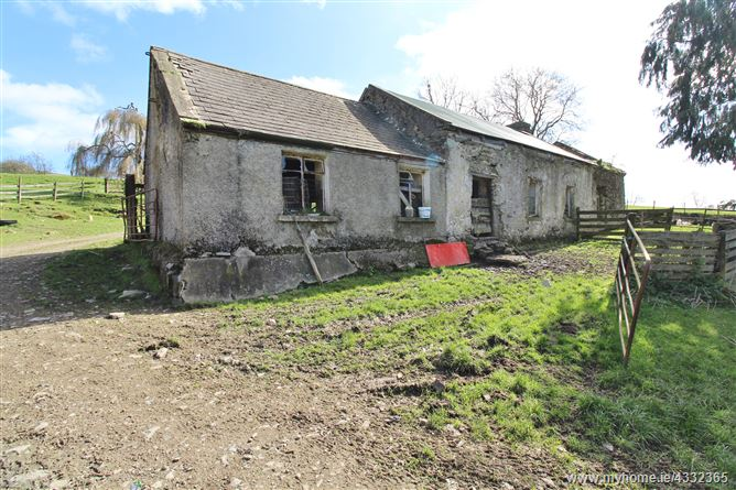 Derelict Residence & Farmyard on c. 59.5 Acres/ 24 Hectares available in 1 or 2 Lots, Kilbaylet Lower