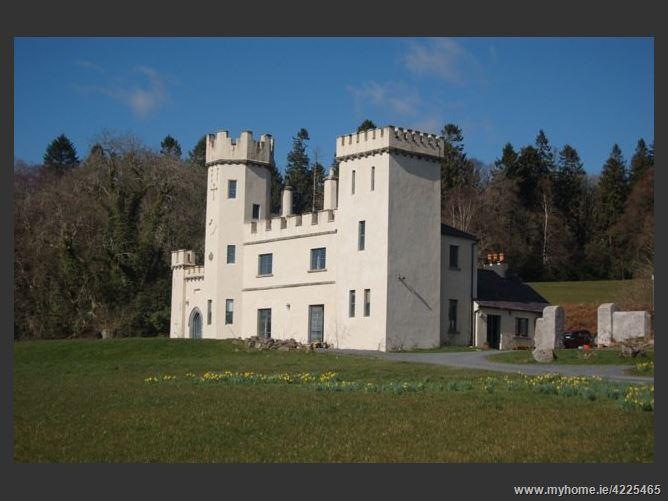 Main image for Luxury Tipperary Castle,Bansha Tipperary Ireland