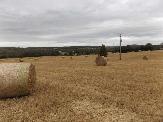 Main image for C. 33.5 Acres, Birr, Co. Offaly