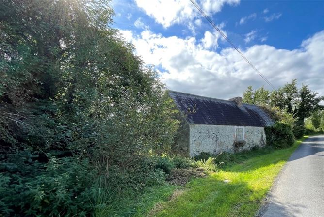 Main image for Cottage & c 9.8 acres Land @ Drumcrow, Corlesmore, Co Cavan H12 VY51, Ballinagh, Co. Cavan