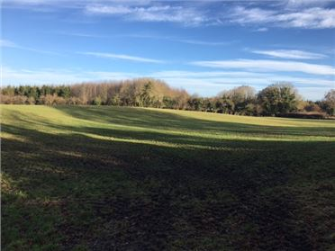 Photo of 11.7 Hectares, Dryderstown, Delvin, Westmeath