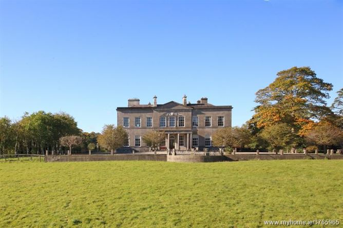 Harristown Demesne on c. 750 Acres, Brannockstown, Kildare