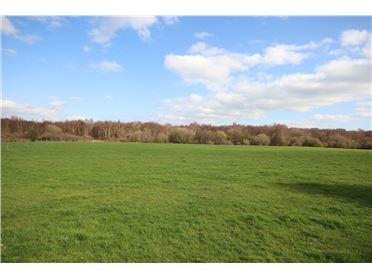 Photo of c.6.08 Acres (2.46 Hct), Lipstown, Kilcullen, Kildare