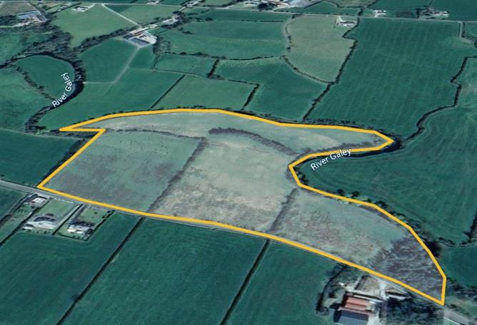 Main image for Approx. 25.8 Acres at Gortdromagouna, Moyvane, Kerry