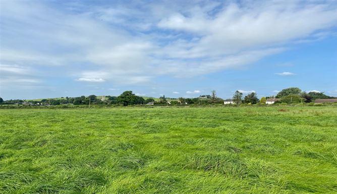 Main image for 12.7 Acres, Carbury, Kildare