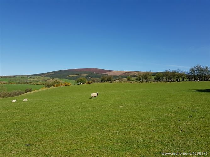 Main image for Studfield, Donard, Wicklow